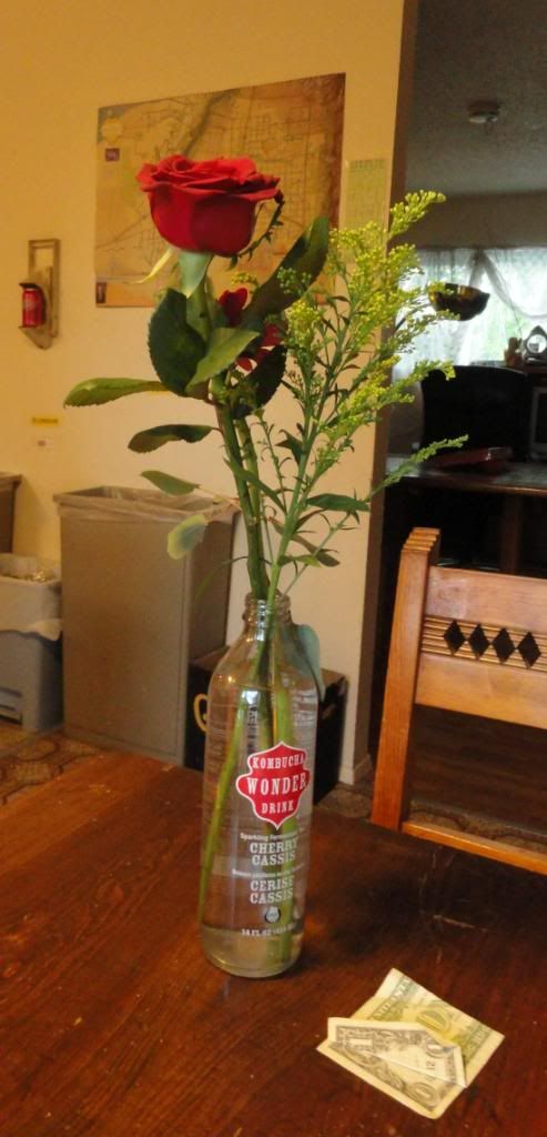 a red rose, in a soda bottle from India