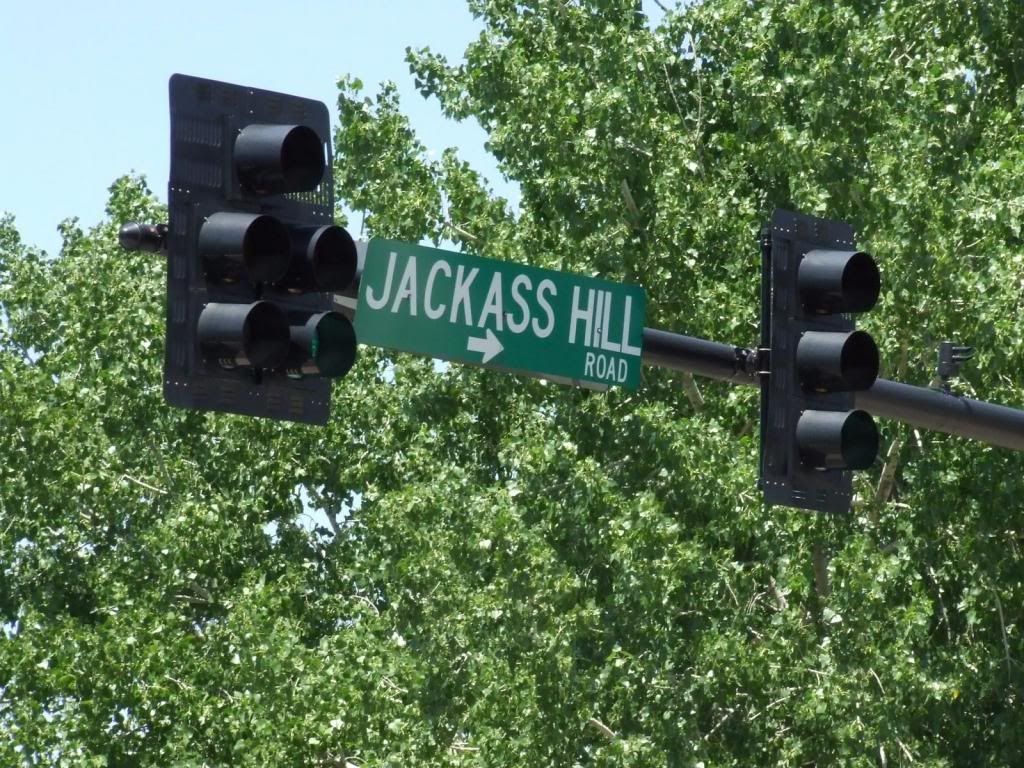 traffic lights and street sigh reading 'Jackass Hill'