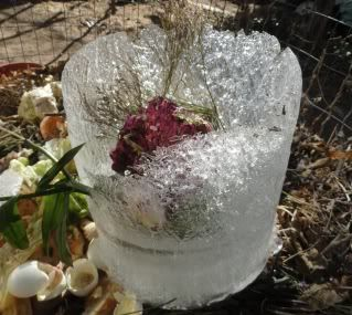 lump of ice the shape of a bucket, with old flowers stuck in the middle