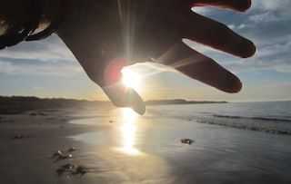 photo of a hand held up to the sun, at the beach