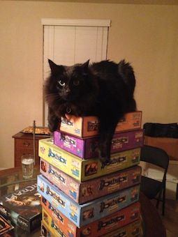 photo black cat on top of a pile of 8 game boxes of Dominion