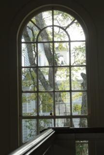 tree through an 19th century window in a New England church