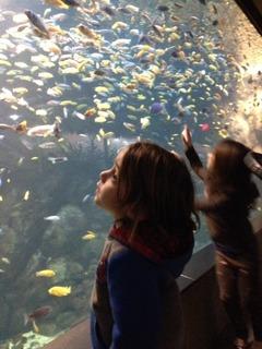 children at full-wall aquarium