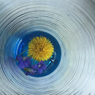 small wildflowers in the bottom of a glass bowl
