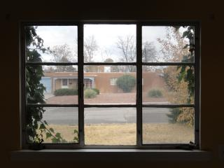 nine-pane steel=frame window, showing the house across the street