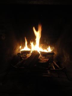 wood fire in the dark