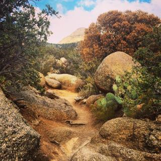 La Luz trail, near Albuquerque