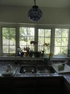 kitchen sink, wall of windows, flowers on the sill