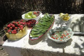 colorful wedding party food, outside in sunshine