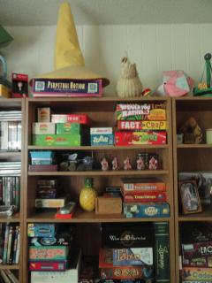 shelves with toys, games, hats, baskets, art, DVDs
