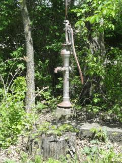 hand pump, for water, in woods