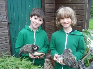 boys holding marmosets